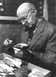 Евгений Спангенберг